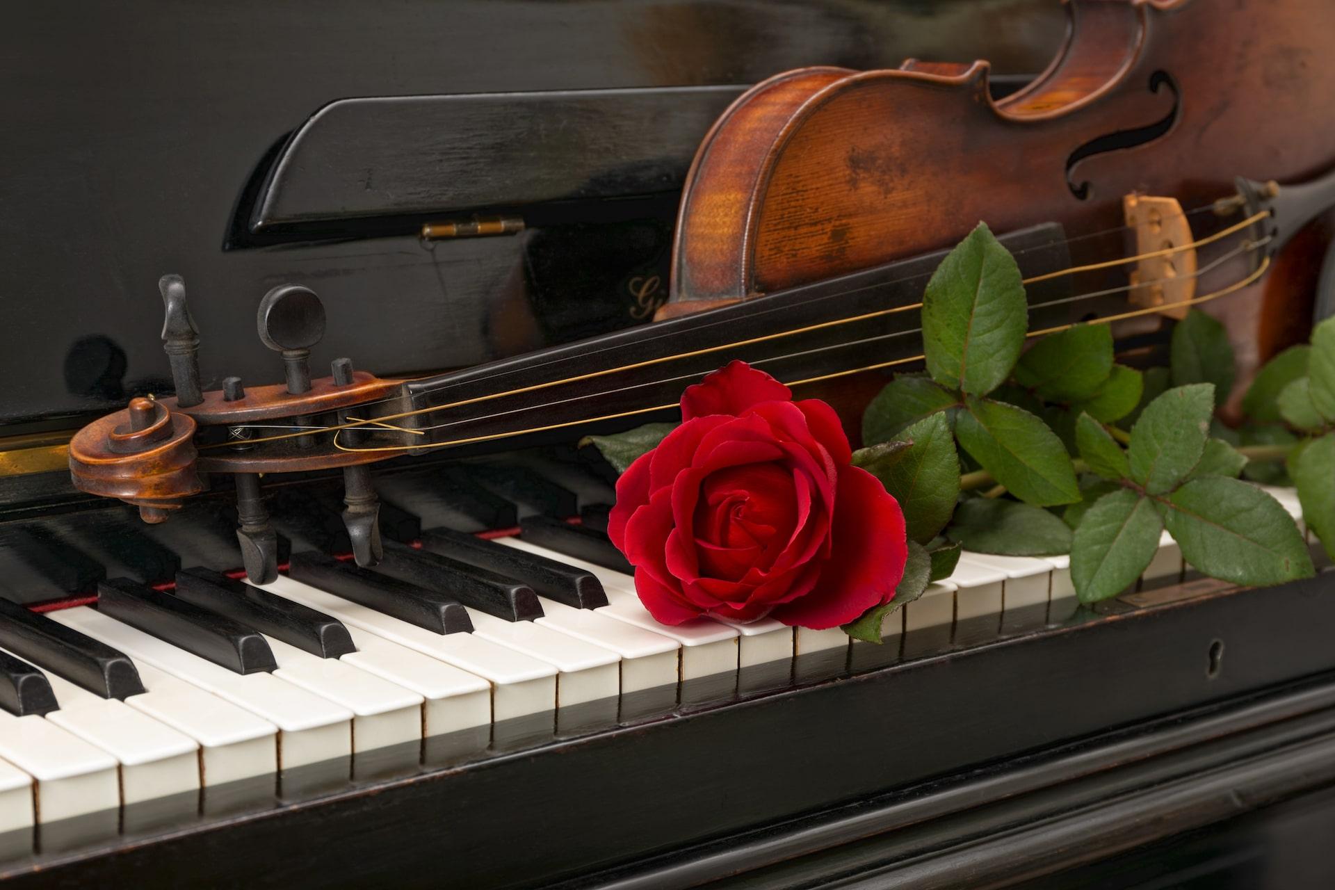 Your Song (Elton John) – Klaviernoten, Leadsheet und Anleitung